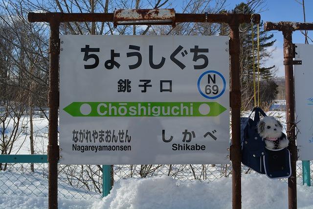 銚子口駅(ちょうしぐち) - パ...